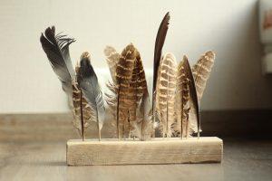 veren steigerhout