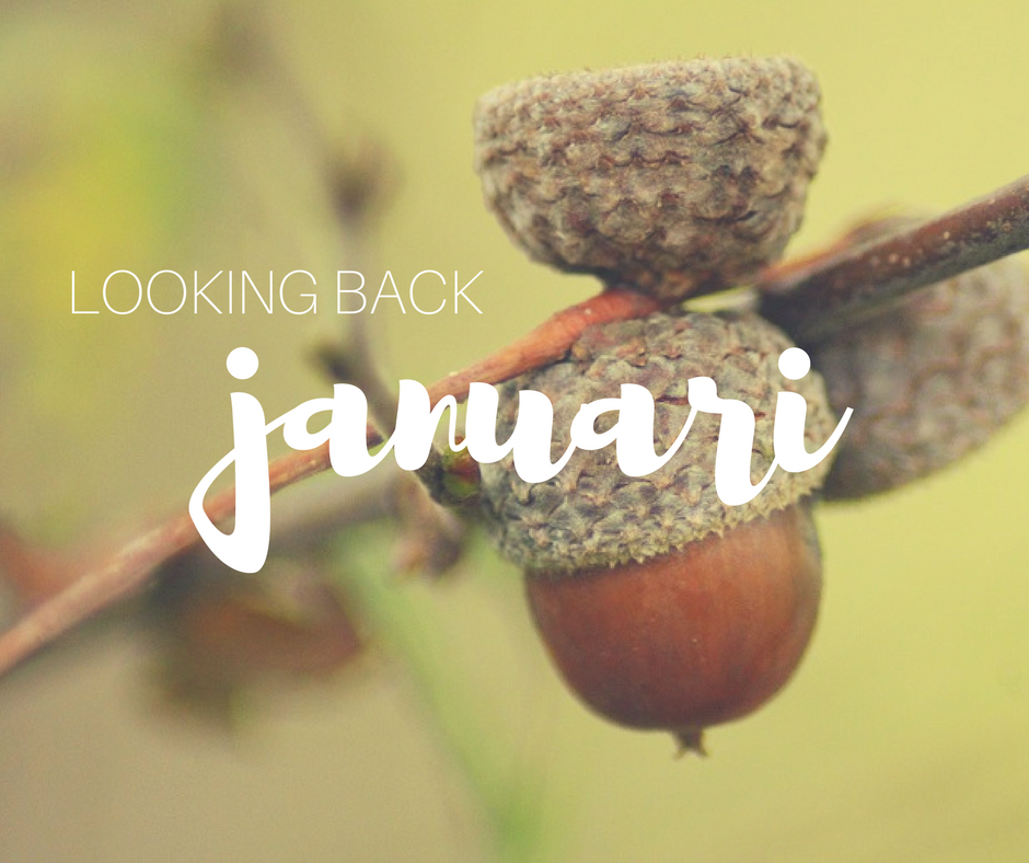Looking back: januari