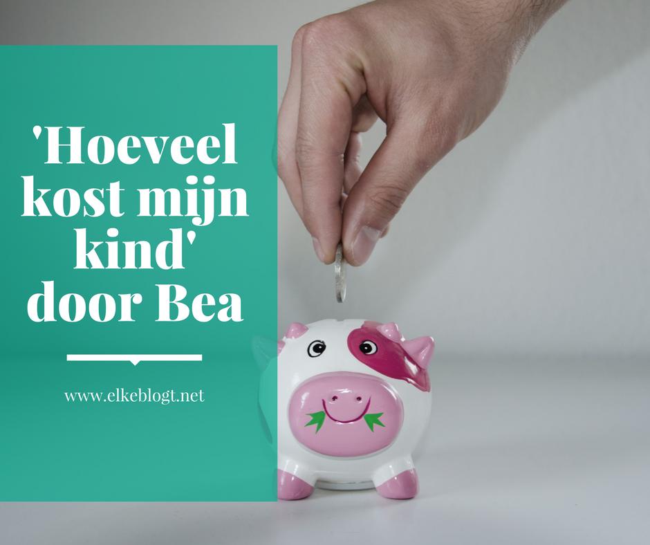 'Hoeveel kost mijn kind' door Bea