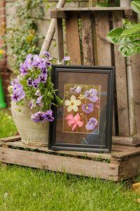 gedroogde-bloemen-in-lijst