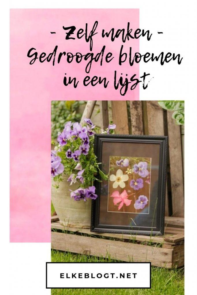 gedroogde-bloemen-in-een-lijst