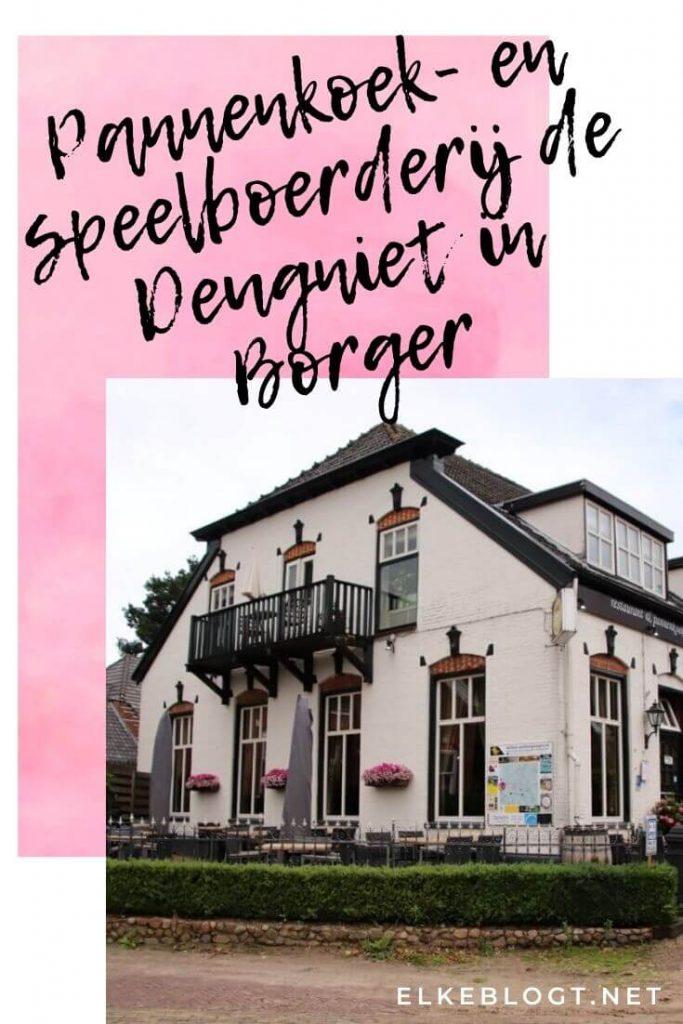Pannenkoek-en-speelboerderij-de-Deugniet-Borger