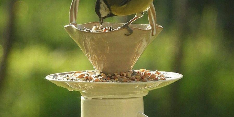 vogelvoer-knutselen-met-kinderen