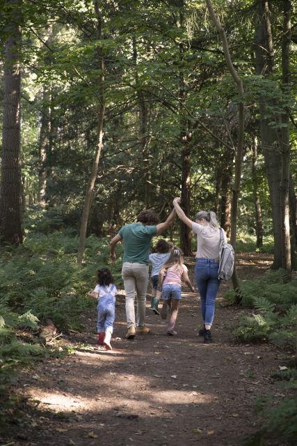 wandelroutes-belevingspaden-kinderen-drenthe